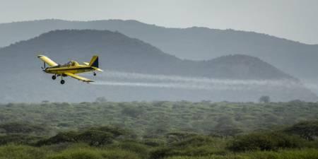 'Spray planes combat billions of locusts in Kenya